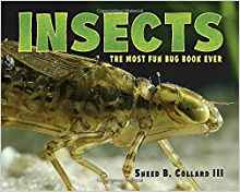 insects sneed collard