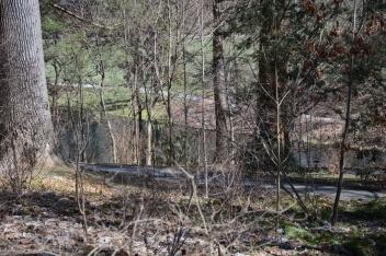 Longwood Gardens March 29 2017 (13) (1024x683)