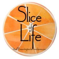 slice-of-life2